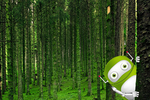 bot lost in forest